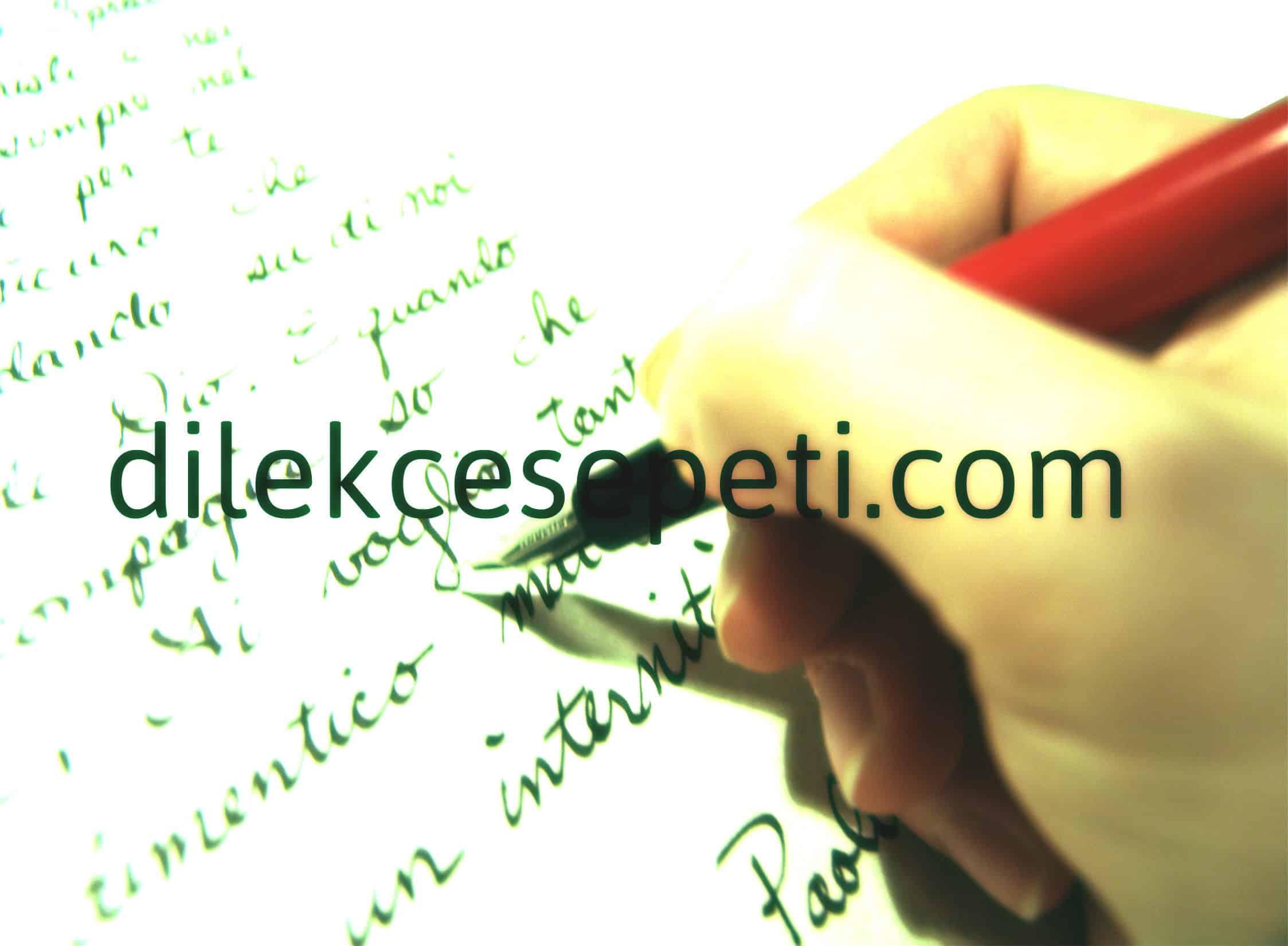 Dilekçe yazmak