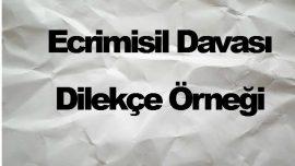 Ecrimisil Davası Dilekçe Örneği