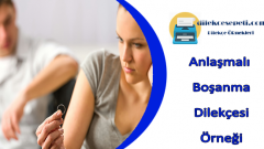 Anlaşmalı Boşanma Dilekçesi Örneği