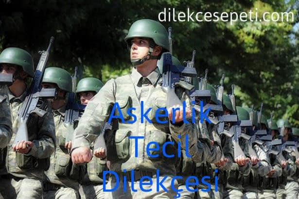 askerlik tecili dilekçesi