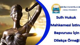 Sulh Hukuk Mahkemesi İstinaf Başvurusu Dilekçe Örneği