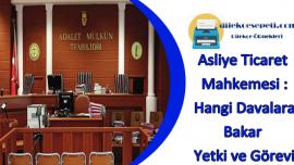 Asliye Ticaret Mahkemesi : Hangi Davalara Bakar – Yetki ve Görevi