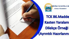 TCK 86. Madde Kasten Yaralama Dilekçe Örneği