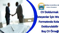 Boş CV Örneği : CV Doldurmak İsteyenler İçin Kolay Doldurulabilir