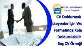 CV Doldurmak İsteyenler İçin Word Formatında Kolay Doldurulabilir Boş CV Örneği