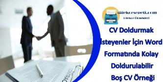 Boş CV Örneği : CV Doldurmak İsteyenler İçin Word Formatında Kolay Doldurulabilir