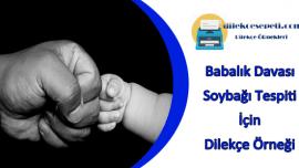 Babalık Davası Dilekçesi Örneği : Anlatım ve Hazır Dilekçe