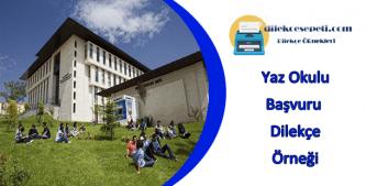 Yaz Okulu Başvurusu İçin Hazır Dilekçe Örneği : Yaz Okuluna Nasıl Başvurulur