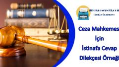 Ceza Mahkemesi İstinafa Cevap Dilekçesi Örneği