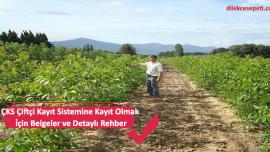 ÇKS Çiftçi Kayıt Sistemine Kayıt Olmak İçin Belgeler ve Detaylı Rehber