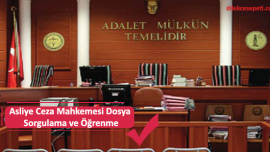Asliye Ceza Mahkemesi Dosya Sorgulama ve Öğrenme