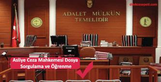 dosya sorgulama işlemi asliye ceza mahkemesi