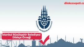 İstanbul Büyükşehir Belediyesi Dilekçe Örneği ve Hizmetler