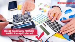 Düşük Kredi Notu KOSGEB Kredisi Almayı Etkiler mi