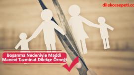 Boşanma Nedeniyle Maddi Manevi Tazminat Dilekçe Örneği